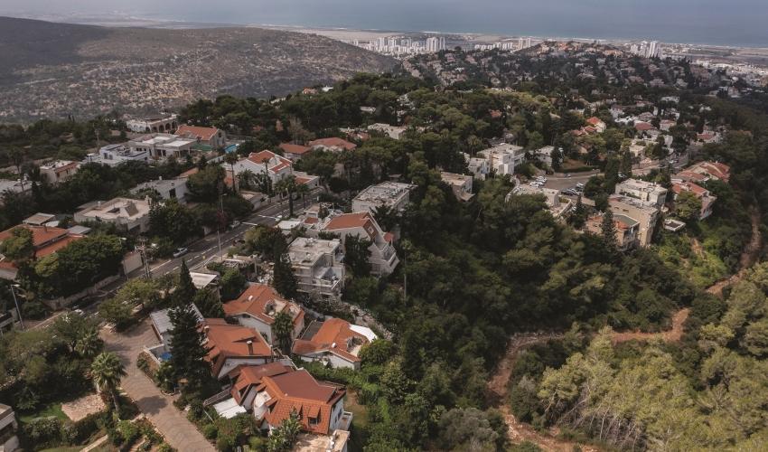 שכונת דניה (צילום: מיכה בריקמן)