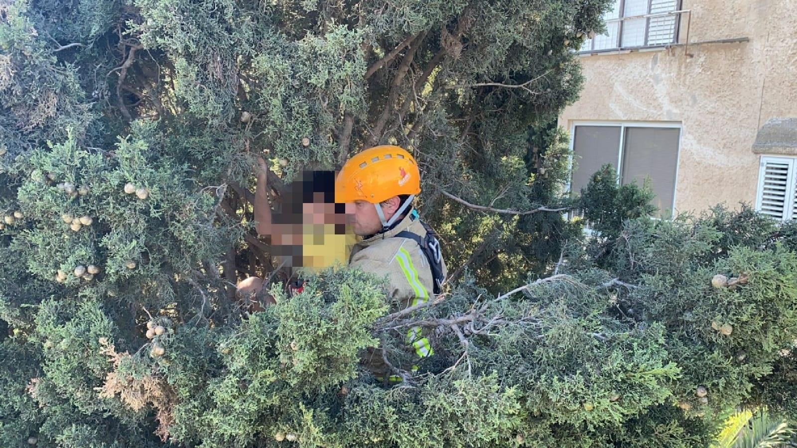 """כוחות כב""""ה מחלצים את הילד מהעץ (צילום: דוברות כבאות והצלה, מחוז חוף)"""